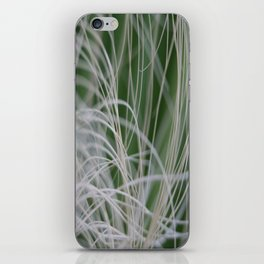 Abstract Image of Tropical Green Palm Leaves  iPhone Skin