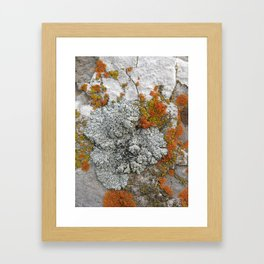 Untitled 5. Framed Art Print