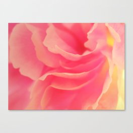 Curling blossom Canvas Print