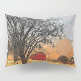 :: Around Robin's Barn :: Pillow Sham