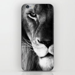 Eyes of a King iPhone Skin