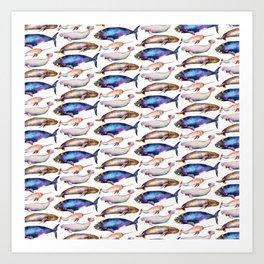 Four Whale Pattern Art Print