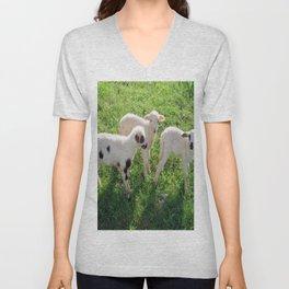 Three Cute Spring Lambs Unisex V-Neck