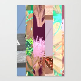 crash_ 11 Canvas Print