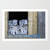 puppies Art Prints featuring Husky puppies by Nathalie Photos