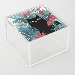Popoki Acrylic Box