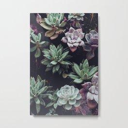 air plants pastels Metal Print