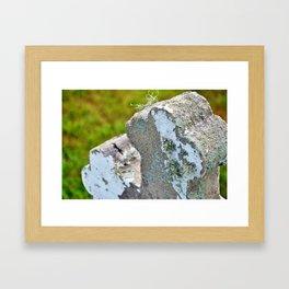 Cemetery Cross with lichen Framed Art Print