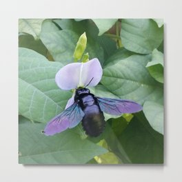 Between A Bee & A Flower Metal Print