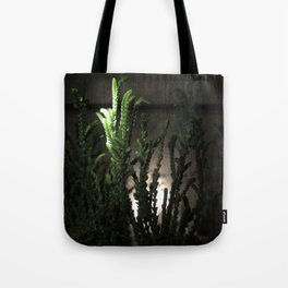 Nighttime in the Garden, 6 Tote Bag