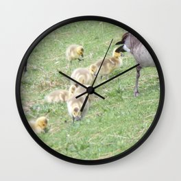 Baby Canadian Geese, Wild Geese, Animals in the Wild Wall Clock