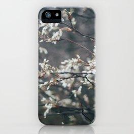 Wild Cherry Blossom iPhone Case