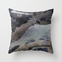 Rock Pool Amongst Mussel Beds Throw Pillow