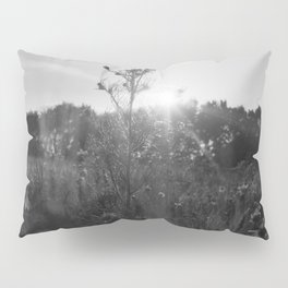 variation on a theme Pillow Sham