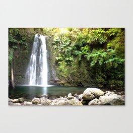 lime green waterfall Canvas Print