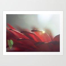 Drops of Light Art Print