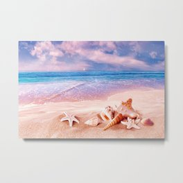 Seashells on the beach Metal Print