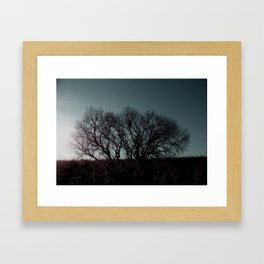 Single Tree Framed Art Print