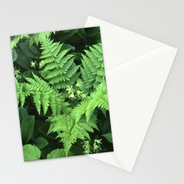 Mountain Bouquet Stationery Cards