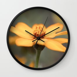zinnia in the garden Wall Clock