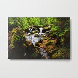 Alpine Falls Metal Print