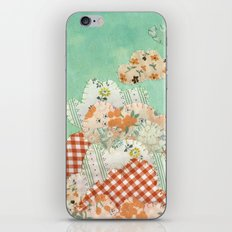 Cloud Carrier iPhone & iPod Skin