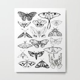 Moth Magic Metal Print