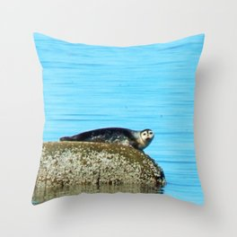 Seal pup stare-down Throw Pillow