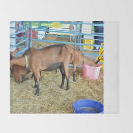 Family of Domestic Goats Throw Blanket