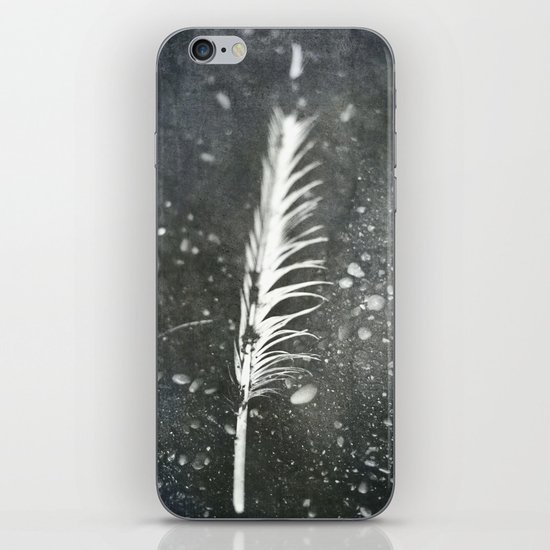 Feather on Black Sand Beach iPhone & iPod Skin
