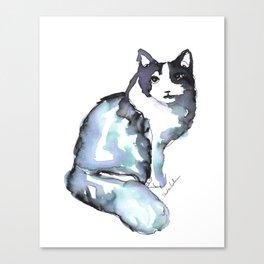 Beautiful Cat, Posing Canvas Print