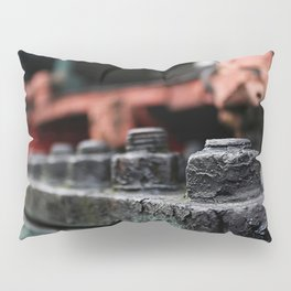 Nuts Pillow Sham