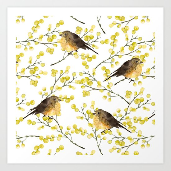 Mimosa and birds Art Print