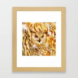 Great Real Owl Framed Art Print
