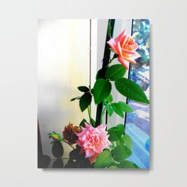 Window Seated Roses Metal Print