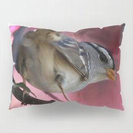White Crowned Sparrow Pillow Sham