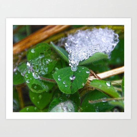 Frozen Green Art Print