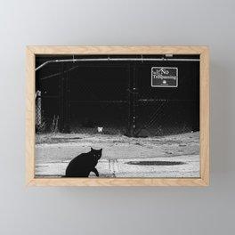 Cat Shadow Framed Mini Art Print