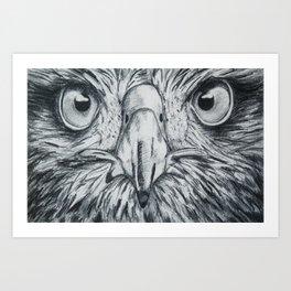 Portrait of an eagle Art Print