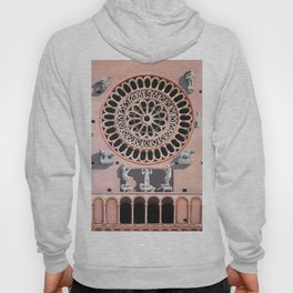 Assisi Cathedral Hoody
