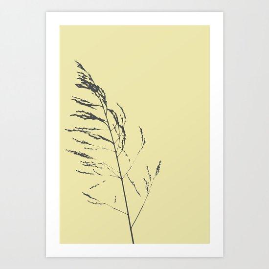 sand reed  Art Print