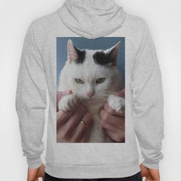Displeased cat Hoody