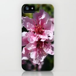 Peach Tree Blossom With Garden Background iPhone Case