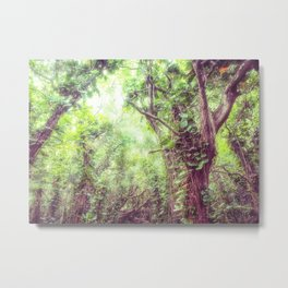 Dreamy Jungle Canopy Metal Print