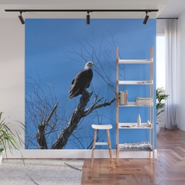 Clear Sight (Bald Eagle) Wall Mural
