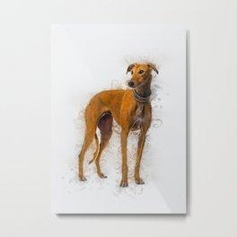 Greyhound Art Metal Print