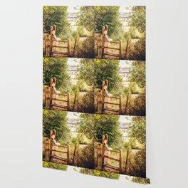 Summer-haze landscape Wallpaper