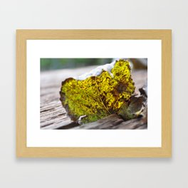 blatt Framed Art Print