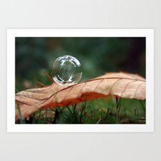 Leaf Bubble Art Print