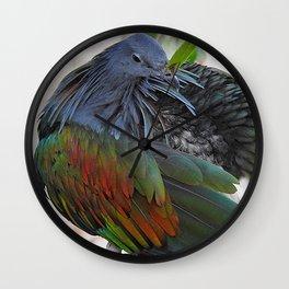 Nicobar Pigeon Preening Wall Clock